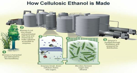 How Cellulosic Ethanol is Made